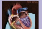 Echocardiography Review Guide 3rd Edition PDF