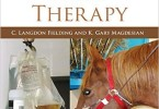 Equine Fluid Therapy PDF