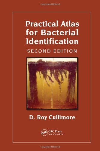 Practical Atlas for Bacterial Identification 2nd Edition  PDF