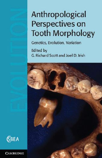 Anthropological Perspectives on Tooth Morphology PDF