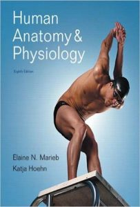 Human Anatomy and Physiology 8th Edition PDF