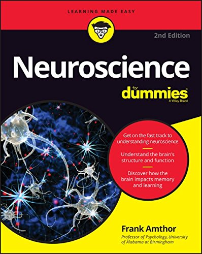 Neuroscience For Dummies 2nd Edition PDF