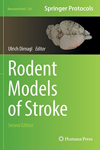 Rodent Models of Stroke 2nd Edition PDF