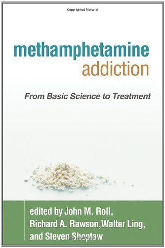 Methamphetamine Addiction PDF