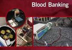 Manual of Veterinary Transfusion Medicine and Blood Banking PDF