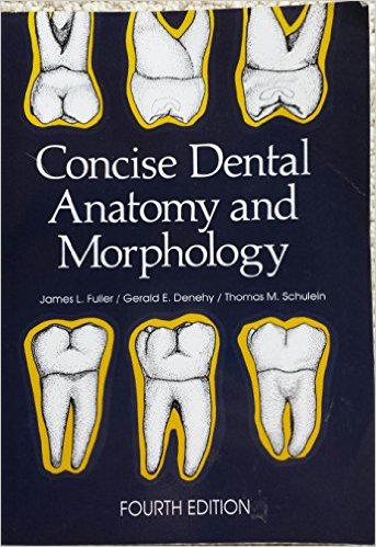 Concise Dental Anatomy and Morphology 4th Edition PDF