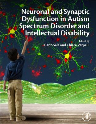 Neuronal and Synaptic Dysfunction in Autism Spectrum Disorder and Intellectual Disability PDF