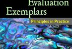 Developmental Evaluation Exemplars PDF