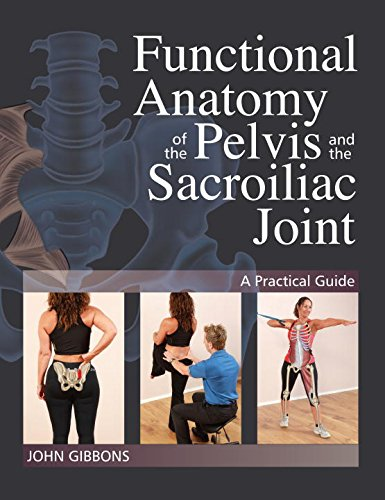 Functional Anatomy of the Pelvis and the Sacroiliac Joint PDF