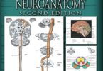 Atlas of Functional Neuroanatomy Second Edition PDF