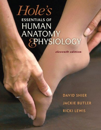 Holes anatomy and physiology 11th edition PDF