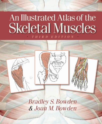 An Illustrated Atlas of the Skeletal Muscles 3rd Edition PDF