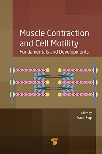 Muscle Contraction and Cell Motility PDF