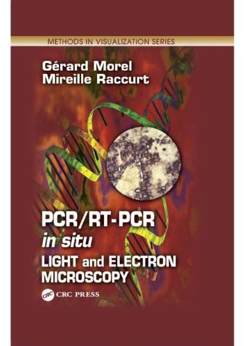 PCR/RT- PCR in situ Light and Electron Microscopy PDF
