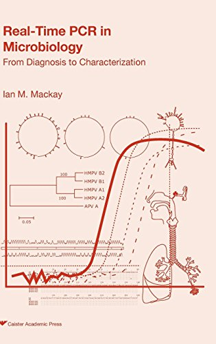 Real-Time PCR in Microbiology PDF