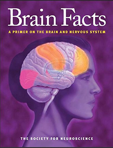 Brain Facts A Primer on the Brain and Nervous System PDF
