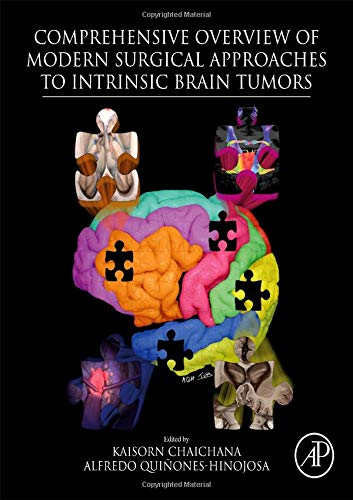 Comprehensive Overview of Modern Surgical Approaches to Intrinsic Brain Tumors PDF Free Download