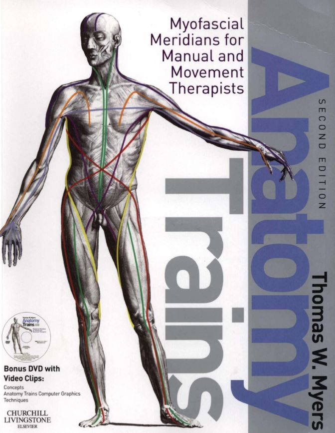 Anatomy Trains Myofascial Meridians for Manual and Movement Therapists 2nd Edition PDF