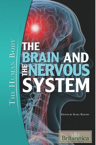 The Brain and the Nervous System (The Human Body) PDF