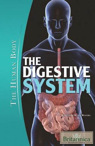 The Digestive System (The Human Body) PDF