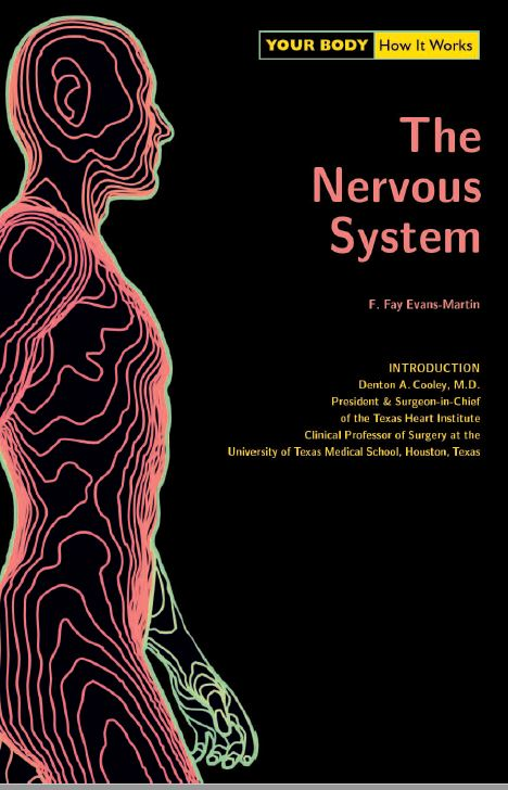Your Body. How It Works. The Nervous System PDF
